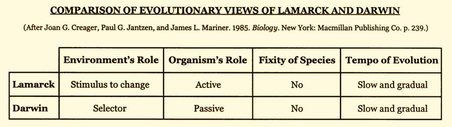 Lamarcks influence on the development of darwins theory
